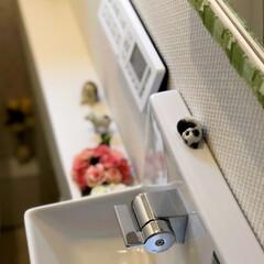 100均/ダイソー/リフォーム/ハンドメイド 一階のトイレは、機能的な最新のものに築2…(2枚目)