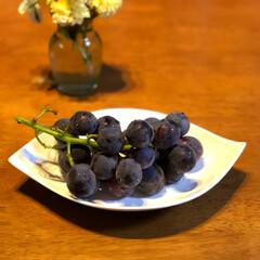 果物 今年初のピオーネ😊💕 甘くて美味しいです…