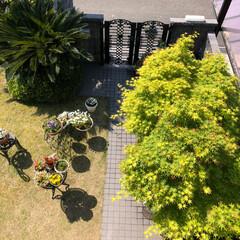 住まい/ここが好き 春と秋、この季節の我家の庭が好きです。😊💕