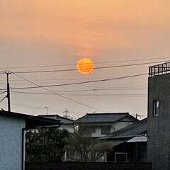 月と太陽 3月29日(月)朝のウォーキングで月🌕と…(2枚目)