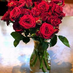 住まい お友達に頂いた、薔薇🌹がいっぱいで、リビ…(2枚目)