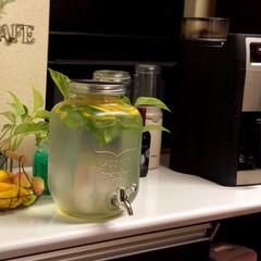 果物水 レモン🍋とミントで果物水part2をつく…