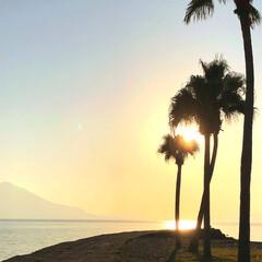 風景/おでかけ/旅 桜島の夕陽です😊(1枚目)