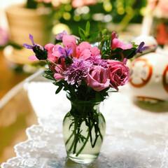グリーン/住まい 久しぶりに、庭に咲いていたお花を摘んでテ…