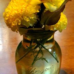 住まい 庭に咲いている、薔薇とマリーゴールドをテ…