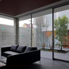 不動産・住宅/リビング/モダン/コンクリート/中庭 KaleidoscopeⅥ