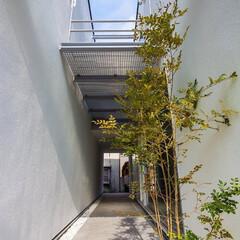 不動産・住宅/注文住宅/設計事務所/工務店/建築/中庭/... トンネルの家の『通り庭』
