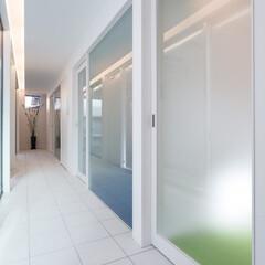 不動産・住宅/注文住宅/建築/設計事務所/工務店/デザイン/... トンネルの家のホール