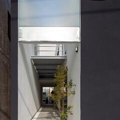 不動産・住宅/注文住宅/設計事務所/工務店/デザイン/中庭/... トンネルの家の『通り庭』