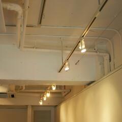 ライト/照明 展示品ごとに変化する照明位置に対応するた…