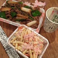 お弁当/牛丼弁当/マカロニサラダ 我が家の定番牛丼弁当  野菜とお肉を醤…