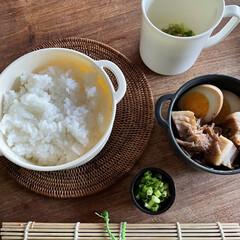 お弁当 ルーロー飯弁当🍱  煮玉子、玉ねぎ醤のね…(1枚目)