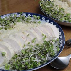 カオマンガイ/むね肉/鶏肉/タイ料理/スプラウト カオマンガイが大好きで 何度も作っていま…