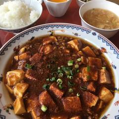 麻婆豆腐/定食/ランチ/中華/昼ごはん/グルメ/... お昼は麻婆豆腐 コーヒー付いて660円 …(1枚目)