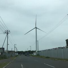 風車/おでかけ 無風なのか全く動いてない😵