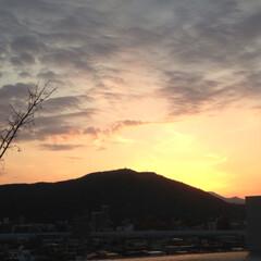夕陽/藻岩山/札幌 札幌のダイヤモンドヘッド(笑) 小さい頃…