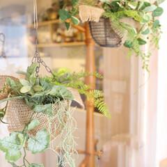 ナチュラル/観葉植物/インテリアグリーン/リラックス カフェの入り口に飾った観葉植物風グリーン…