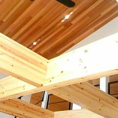 梁/シーリングファン/木造/レッドシダー/木材(ウッド)/梅雨/... レッドシダーの色合いがいい感じになってき…