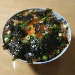 小口ネギ/韓国海苔/胡麻/鰹節/半熟玉子/朝から丼 昨日よさむらさんの投稿の半熟玉子丼❗️ …