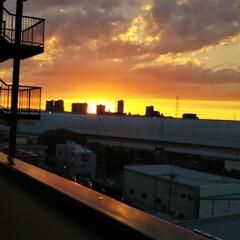 きゅうり/夕焼け おはようございます。 昨日買い物にいった…(2枚目)