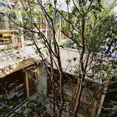 庭/テラス/モダン/ガーデン/ウッドデッキ/屋上庭園/... 1階の中庭から屋上庭園・草根風へつながり…