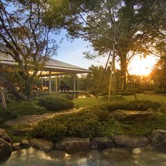 日本庭園 日本庭園