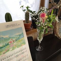 生花/癒し/リビングにピアノ/リビング/ピアノ/花のある暮らし/... 我が家はフェイクグリーンばかり。 びっく…