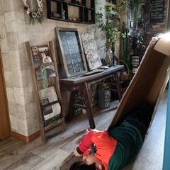壁紙屋本舗/エントランス/廊下/リミアの冬暮らし/DIY/収納/... 段ボール生活をしていた次男。 解体できな…(1枚目)