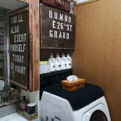 隠す収納/見せる収納/生活感をなくす/洗面所インテリア/洗面所/DIY収納/... 洗面所。 洗面所はなるべく生活感を出さな…