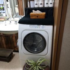 隠す収納/収納/洗剤ボトル/洗濯機周りの収納/洗濯機まわり/洗面所/... 洗面所 洗濯機の紹介ではありません。 洗…