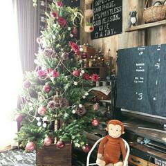 クリスマス/クリスマスツリー/クリスマスディスプレイ/ツリー/180センチ/ホームセンター/... ホームセンターで昨年購入したクリスマスツ…(1枚目)