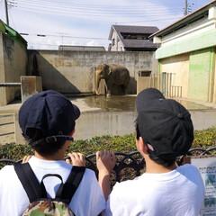 動物園/近所の公園/おでかけワンショット/GW/LIMIAおでかけ部/おでかけ 歩いて10分 公園にある動物園 こどもの…