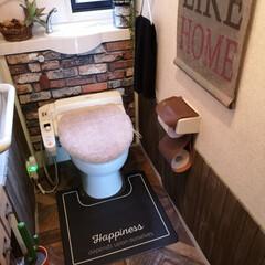 トイレマット/カインズ/快適掃除/雑貨/掃除/暮らし トイレマット。 シートで拭けるトイレマッ…