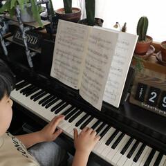 ピアノのある暮らし/ピアノの練習/小3/ピアノ男子/暮らし 3月21日のピアノの発表会 やっぱり中止…