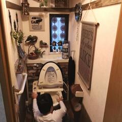男前インテリア/カフェ風インテリア/トイレDIY/トイレインテリア/トイレ掃除/トイレ/... 朝から 小3次男はトイレ 小5長男は玄関…