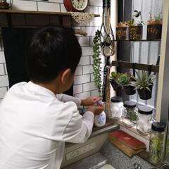 壁紙屋本舗/100均/100均リメイク/DIY/ステッチアートデザイン/花王/... 洗面所 ハンドソープは10年ビオレuを使…