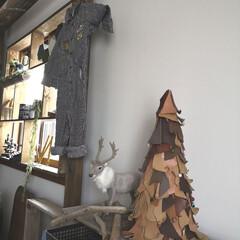レザーツリー/クリスマス/窓枠ディスプレイ/窓枠インテリア/窓枠DIY/寝室インテリア/... お友達から頂いたレザーツリー。 今年で3…