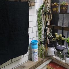 アース製薬 らくハピ マッハ泡 バブルーン 洗面台の排水管 200ml ( 排水管用 洗浄剤 掃除 ) | アース製薬(配管用洗剤)を使ったクチコミ「洗面台の排水管 流れの悪さに若干キレぎみ…」
