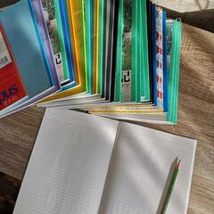 知育アイテム/知育/絵日記/新生活/暮らし 新年度が始まり 幼稚園入園、小学校入学と…