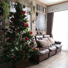 カフェ風インテリア/リビング/バラツリー/ローズツリー/クリスマスツリー/ダイソー/... 我が家のクリスマスツリー。 子どもたちも…(1枚目)