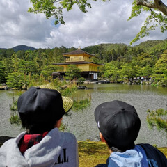 観光/金色/初めてみる金閣寺/京都旅行/京都/金閣寺/... GWは子どもたちと京都へ。 初めて見る金…