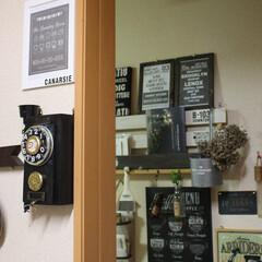 ダイソー/アンティーク風電話機のティッシュケース/フォトフレーム キッチンから廊下の様子 随分 男前になり…