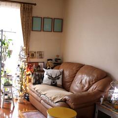 カントリードール/ダイソー ソファー横の棚を変え 壁面もチェンジ♪ …