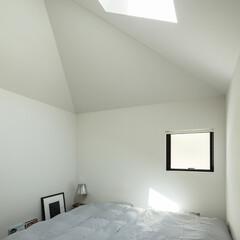 新築/木造/住宅/間取り/戸建て/大阪/... 小さな家の中。トップライトから光が射す。