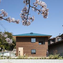 新築/戸建て/木造/住宅/家/大阪/... 敷地の周りを斜路が取り囲みプライバシーを…