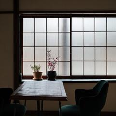 シンプル/ナチュラル/モダン/レトロ/アンティーク/家具/... 出窓は磨りガラスに変更し、格子を外して柔…