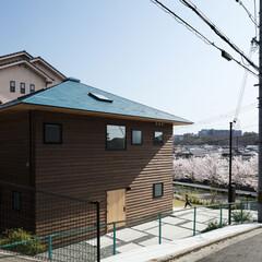 新築/木造/住宅/戸建て/一戸建て/家/... 北西から見る。桜並木の先はなだらかな丘陵…