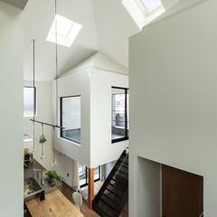 新築/木造/住宅/戸建て/間取り/大阪/... 窓を介していろいろな場所がつながる。