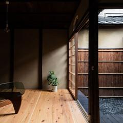 坪庭/中庭/縁側/濡れ縁/居間/リビング/... 居間・濡れ縁・坪庭が連続的に繋がる町屋ら…