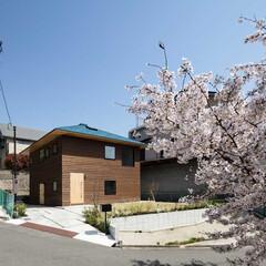 新築/戸建て/木造/住宅/家/大阪/... 8.1m x 8.1mの真四角の上に宝形…